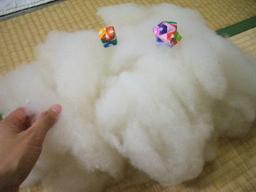 080419_wool