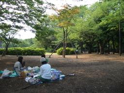 080629_komazawa