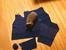 120308_crochet_02